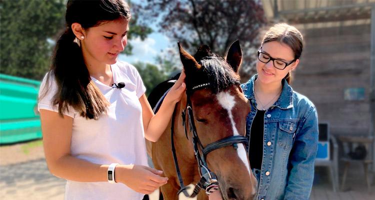 Zwei Mädchen neben einem braunen Pferd